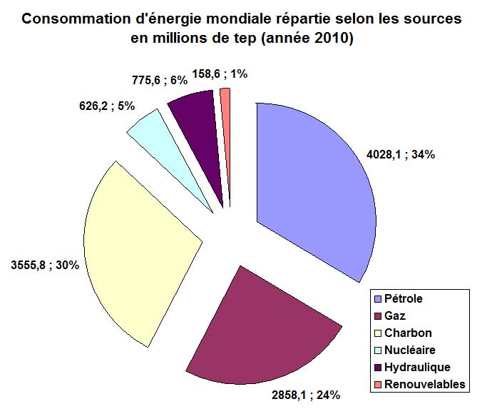 consommation energie primaire 2010